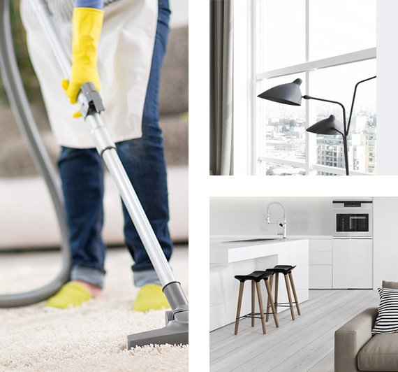 cleaning services in michigan